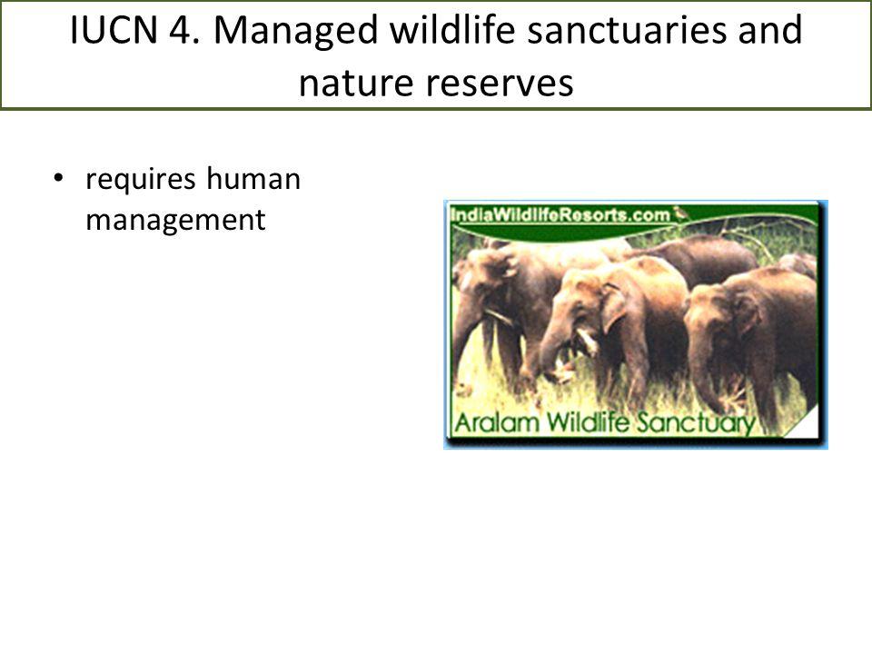 IUCN 4. Managed wildlife sanctuaries and nature reserves