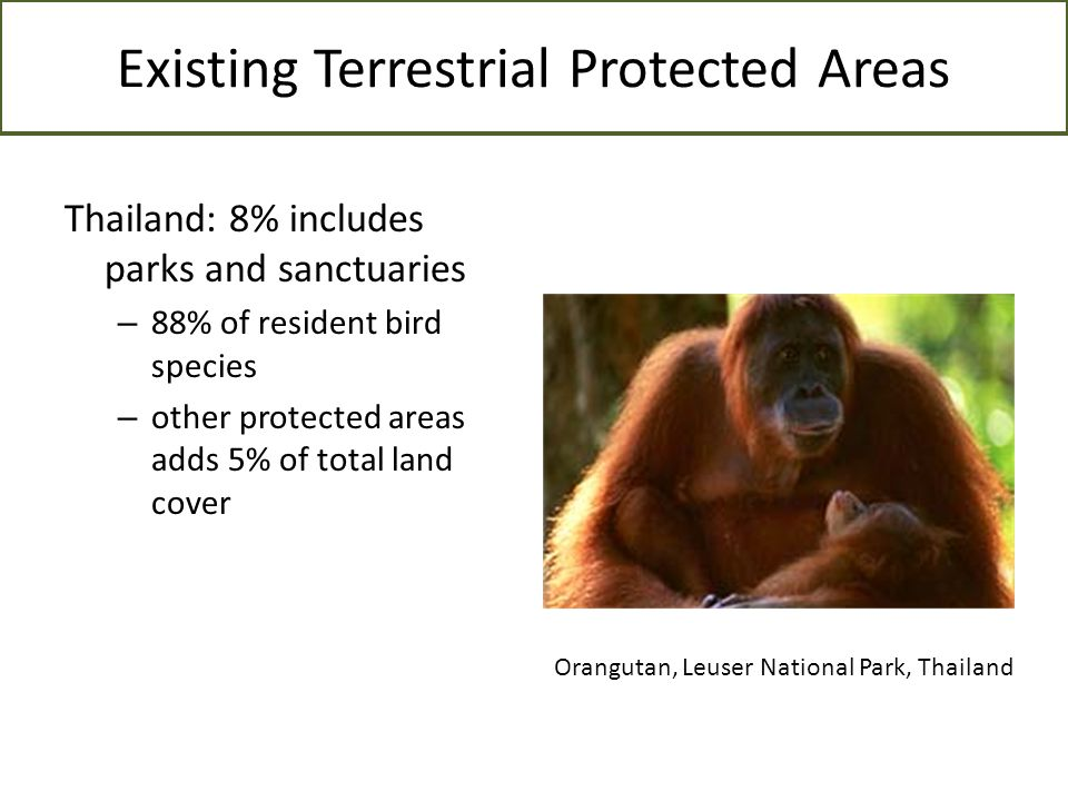 Existing Terrestrial Protected Areas