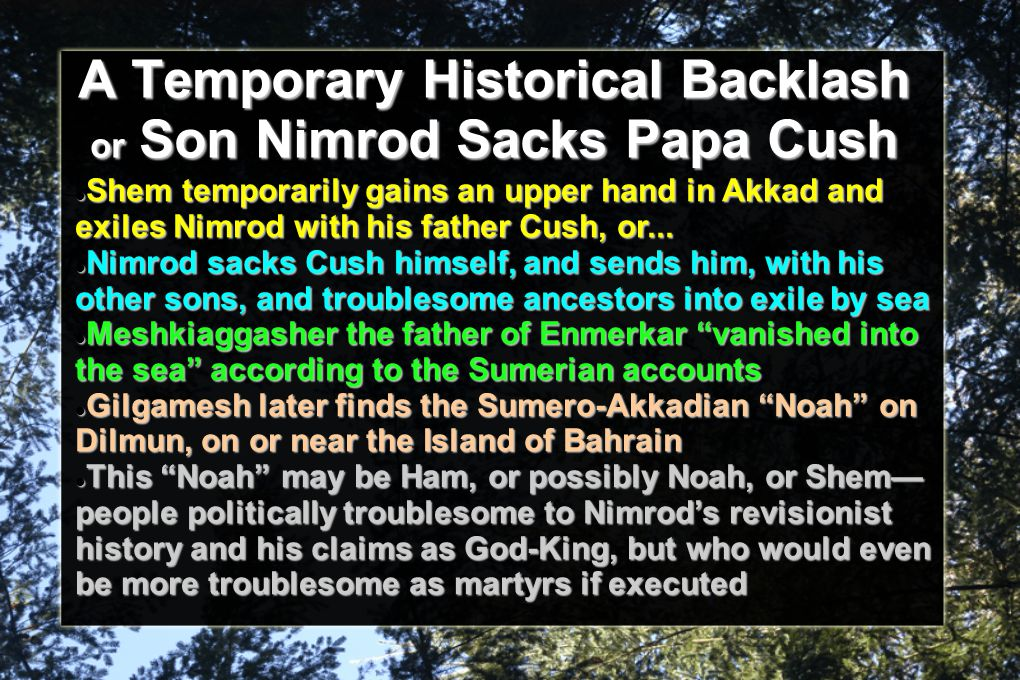 A Temporary Historical Backlash or Son Nimrod Sacks Papa Cush