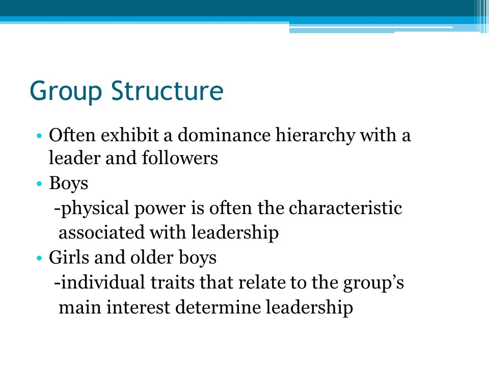 Group Structure Often exhibit a dominance hierarchy with a leader and followers. Boys. -physical power is often the characteristic.