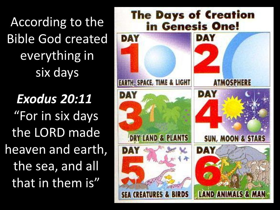 According to the Bible God created everything in