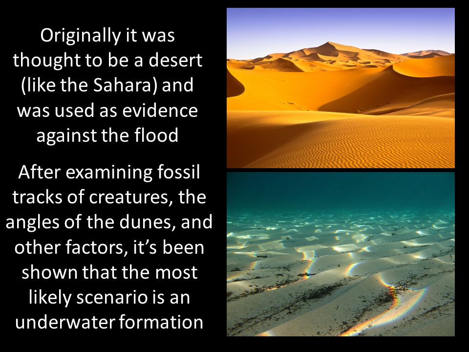 Originally it was thought to be a desert (like the Sahara) and was used as evidence against the flood
