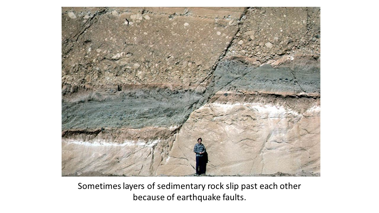 Slipping Sometimes layers of sedimentary rock slip past each other because of earthquake faults.