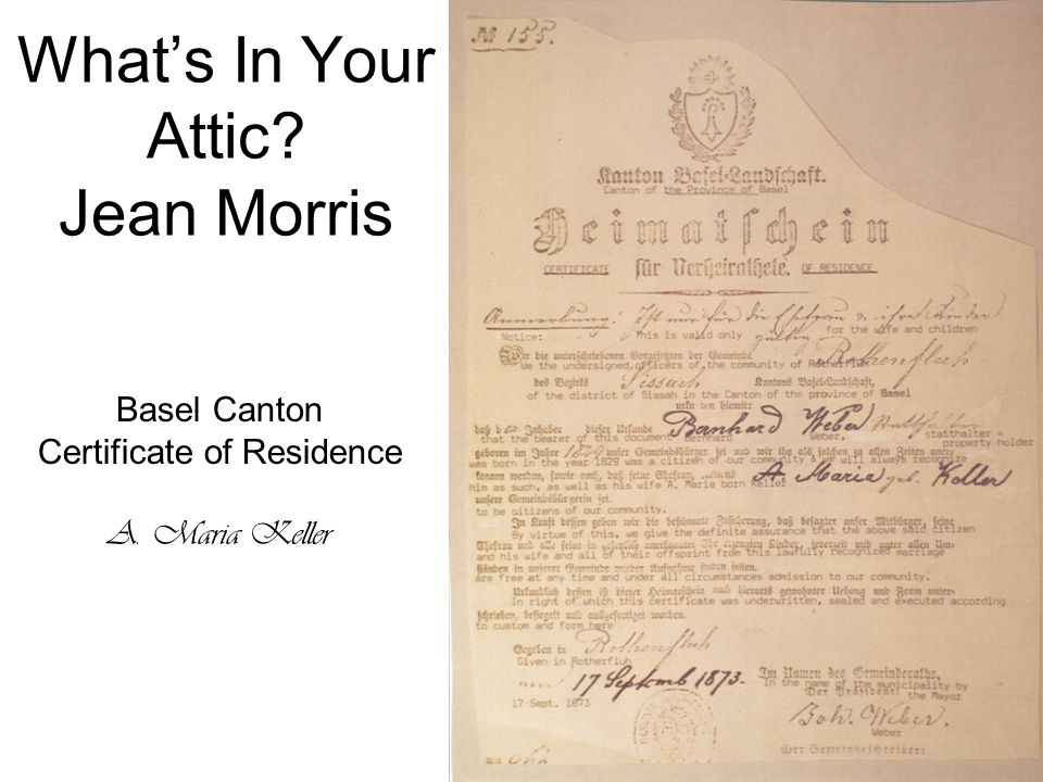 What's In Your Attic Jean Morris