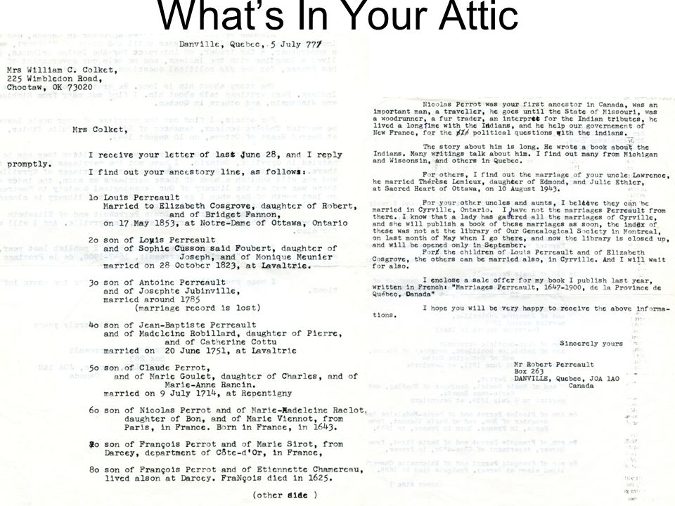What's In Your Attic