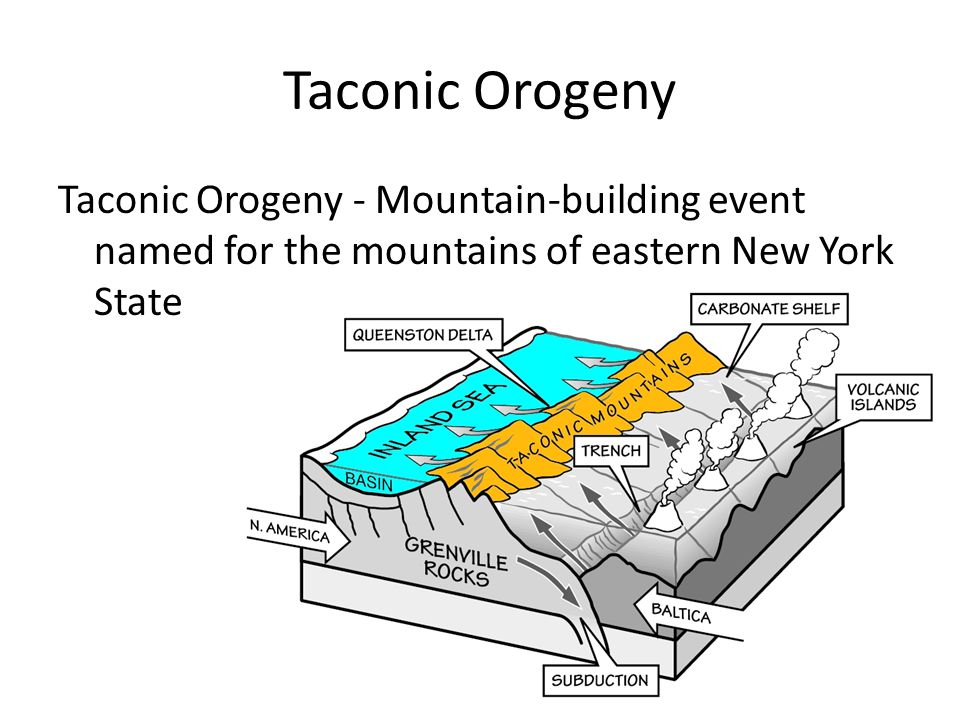 Taconic Orogeny Taconic Orogeny - Mountain-building event named for the mountains of eastern New York State.