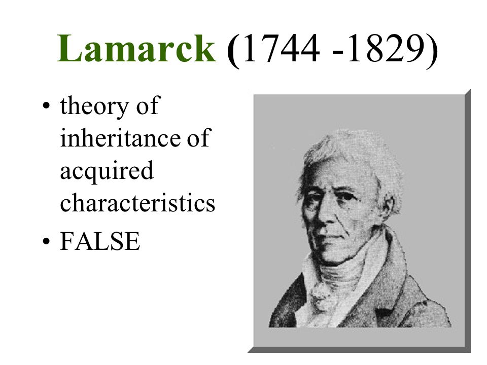 Lamarck (1744 -1829) theory of inheritance of acquired characteristics
