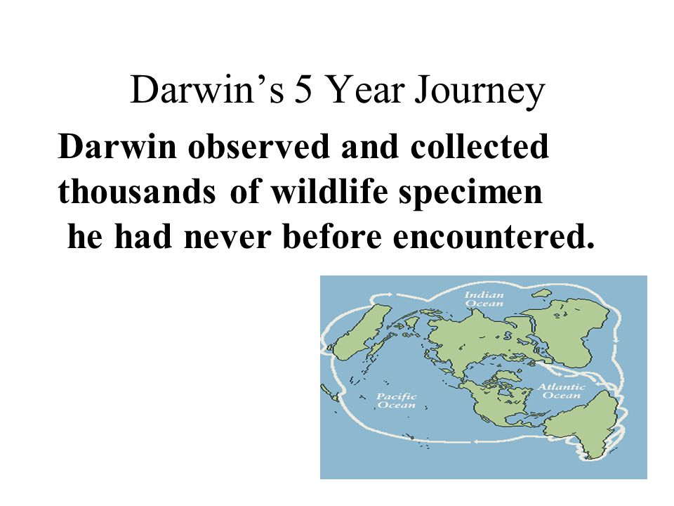 Darwin's 5 Year Journey Darwin observed and collected