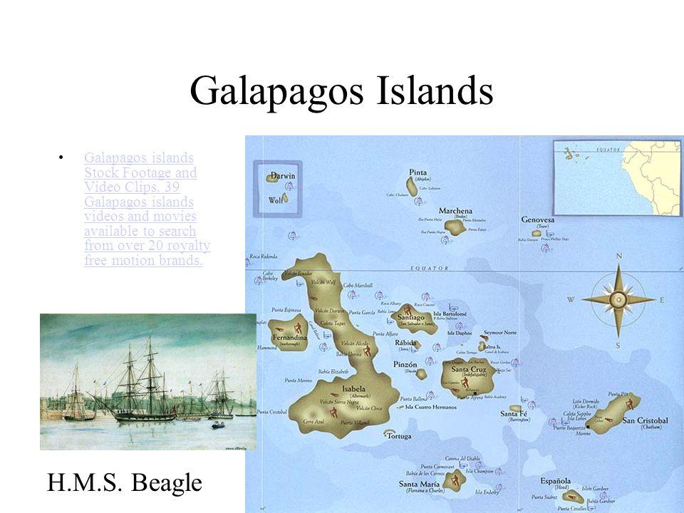 Galapagos Islands H.M.S. Beagle