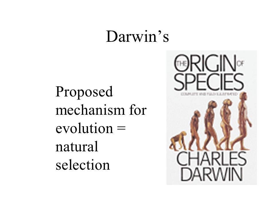 Darwin's Proposed mechanism for evolution = natural selection
