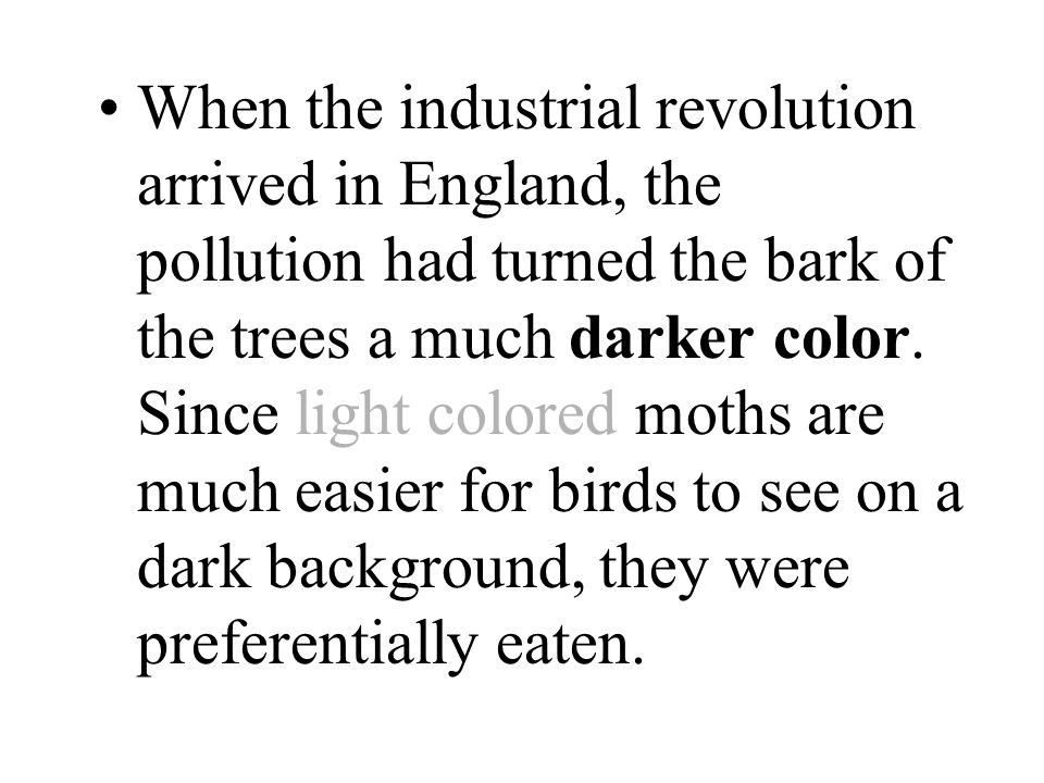 When the industrial revolution arrived in England, the pollution had turned the bark of the trees a much darker color.