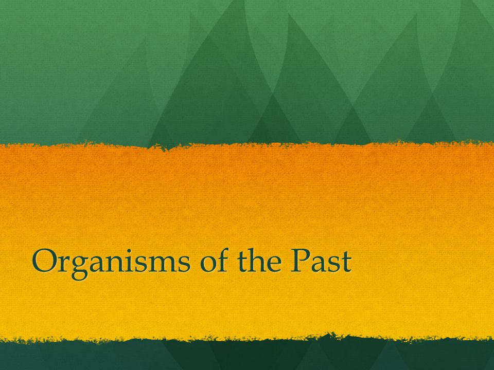 Organisms of the Past