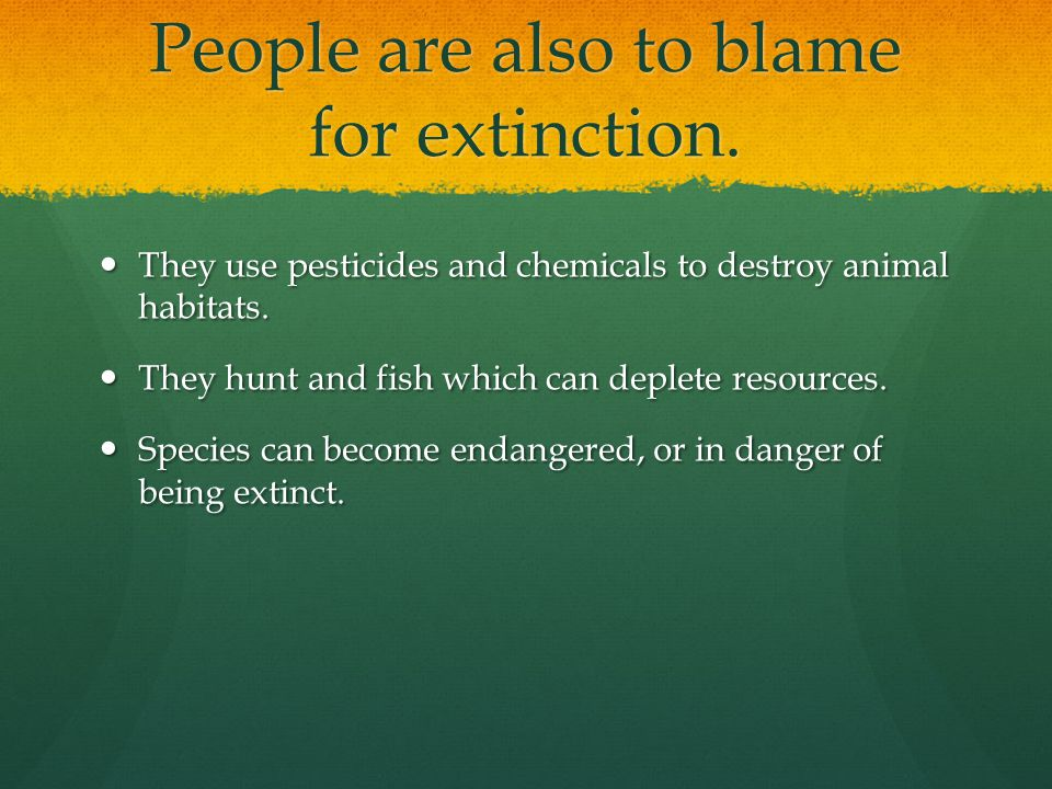 People are also to blame for extinction.
