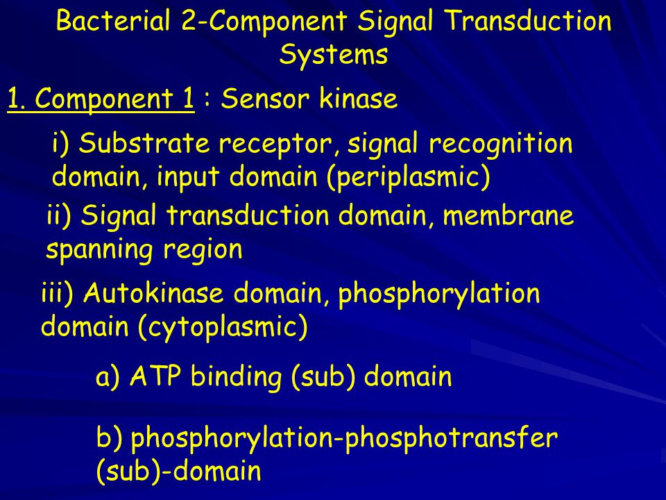 Bacterial 2-Component Signal Transduction Systems