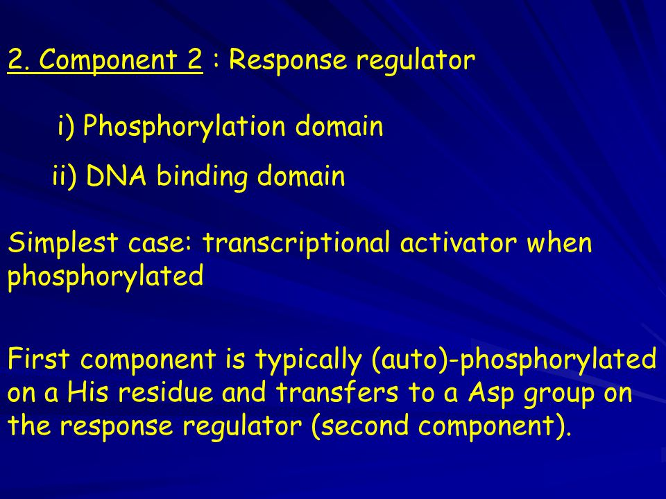 2. Component 2 : Response regulator