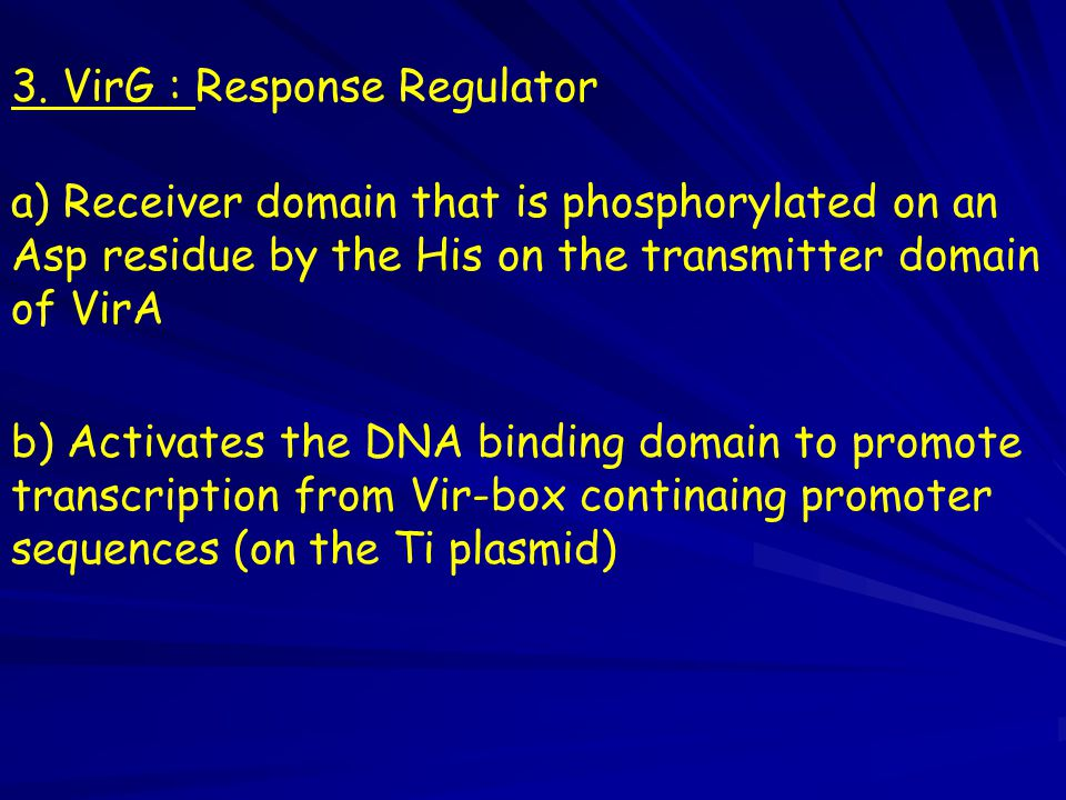 3. VirG : Response Regulator
