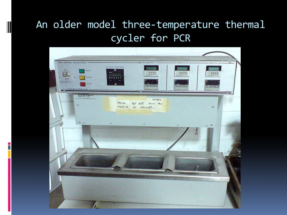An older model three-temperature thermal cycler for PCR