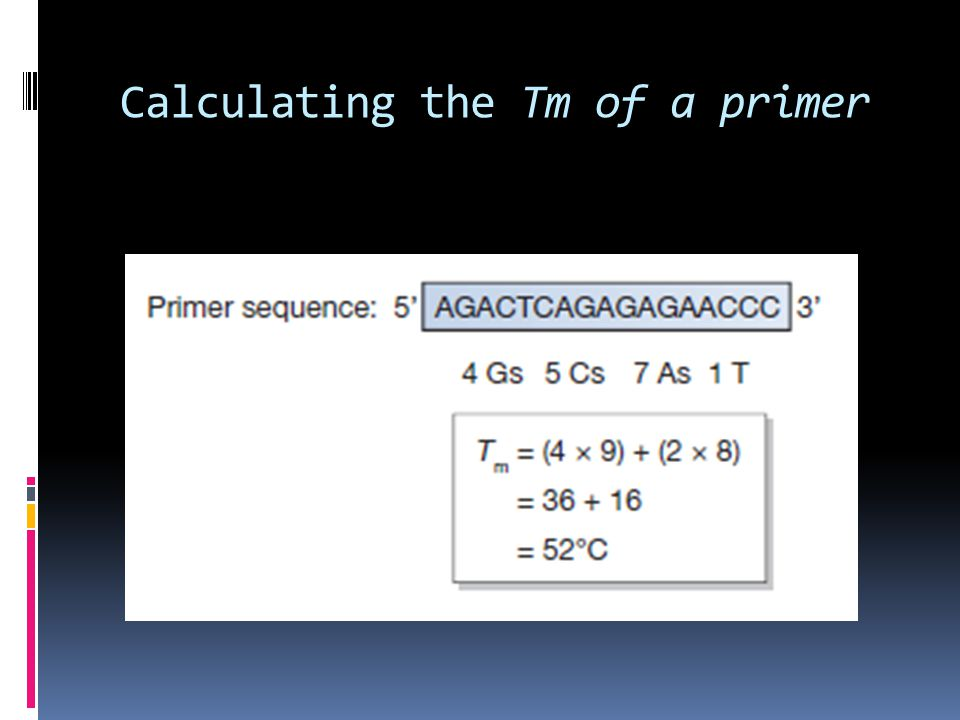 Calculating the Tm of a primer