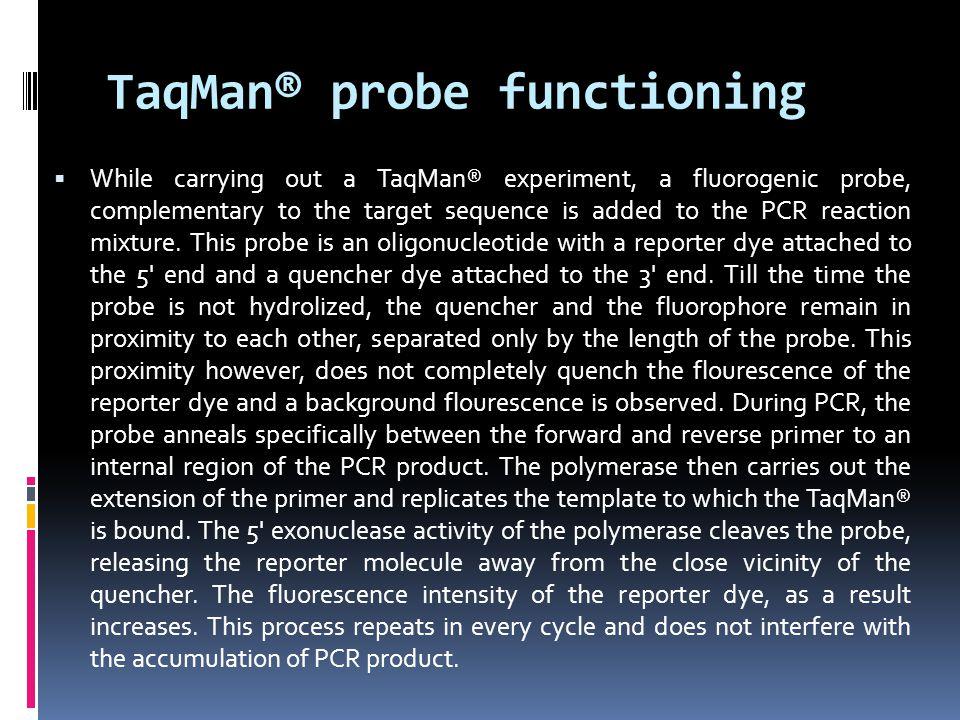 TaqMan® probe functioning