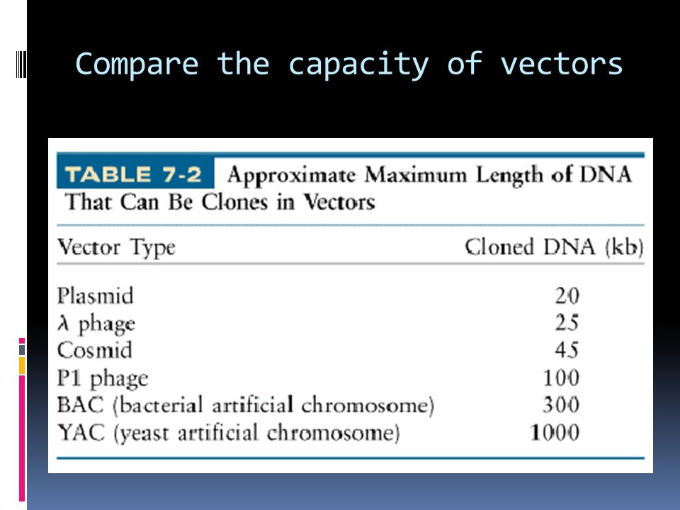 Compare the capacity of vectors