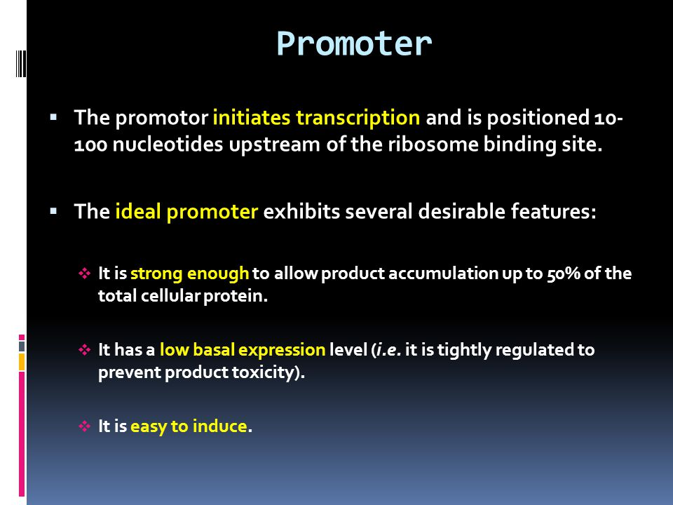 Promoter The promotor initiates transcription and is positioned 10- 100 nucleotides upstream of the ribosome binding site.