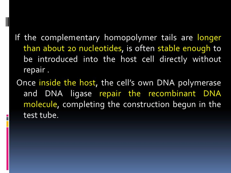 If the complementary homopolymer tails are longer than about 20 nucleotides, is often stable enough to be introduced into the host cell directly without repair .
