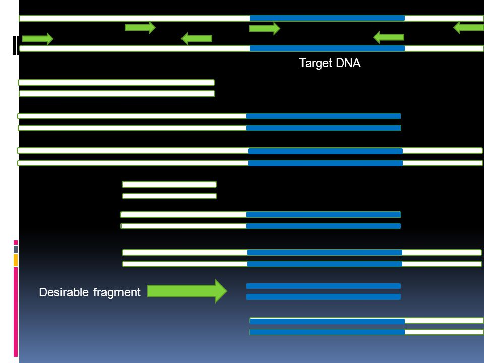 Target DNA Desirable fragment