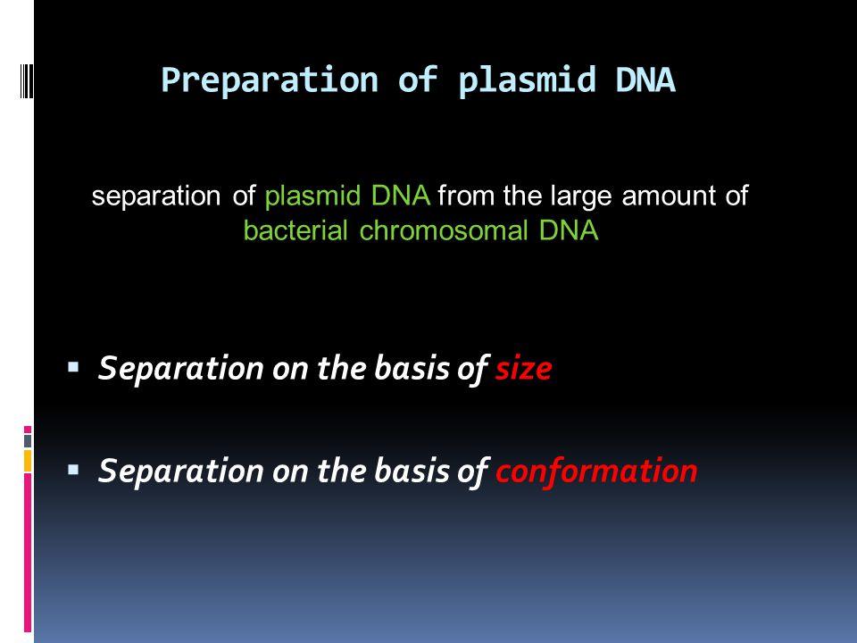 Preparation of plasmid DNA