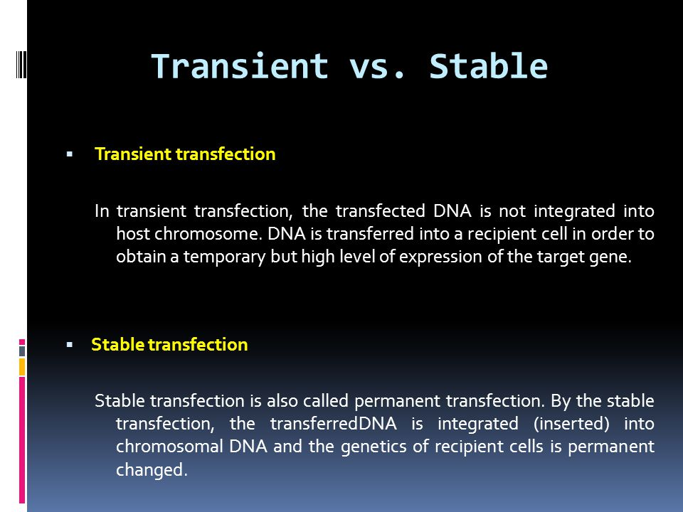 Transient vs. Stable Transient transfection