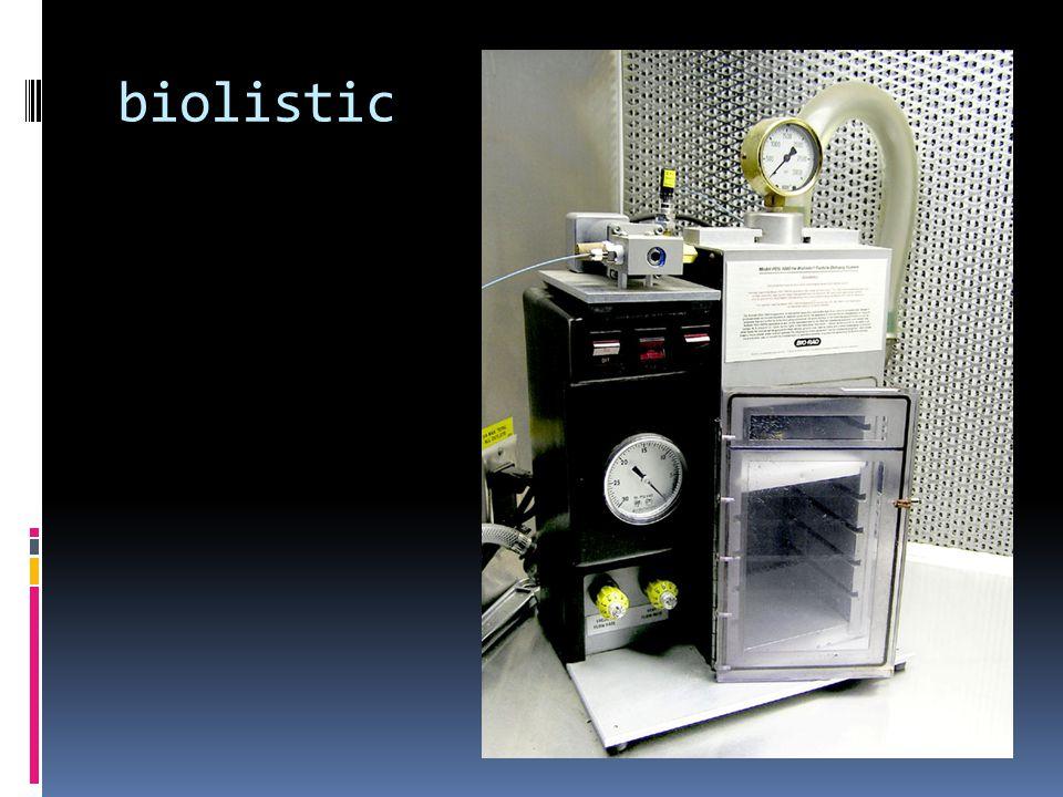 biolistic
