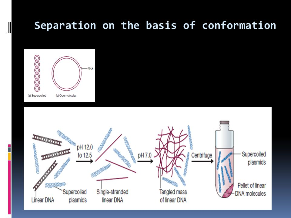 Separation on the basis of conformation