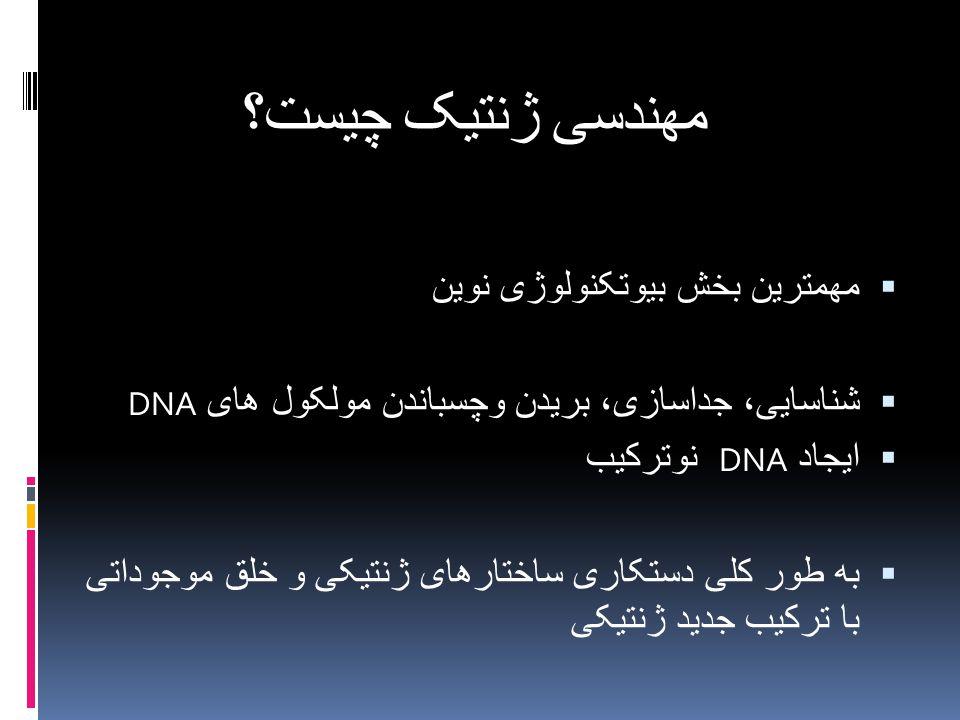 مهندسی ژنتیک چیست؟ مهمترین بخش بیوتکنولوژی نوین