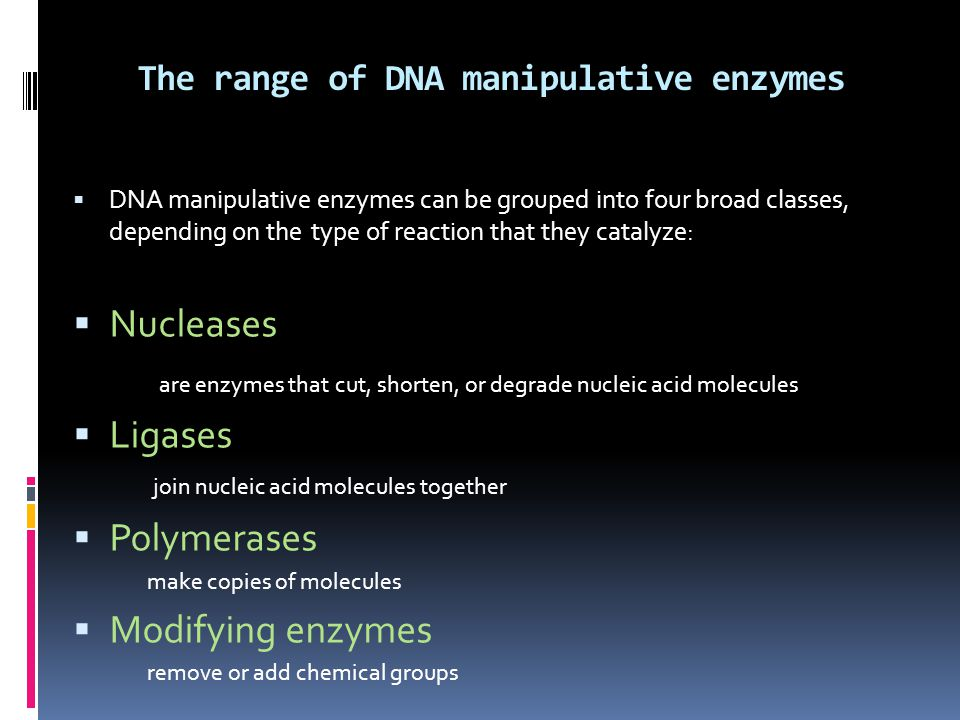 The range of DNA manipulative enzymes