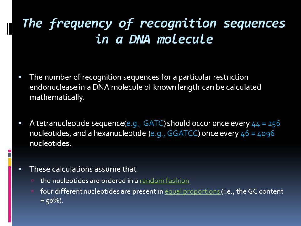 The frequency of recognition sequences in a DNA molecule