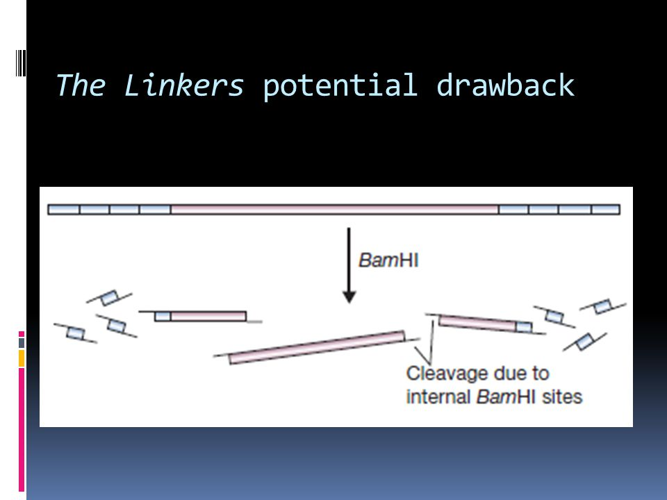 The Linkers potential drawback