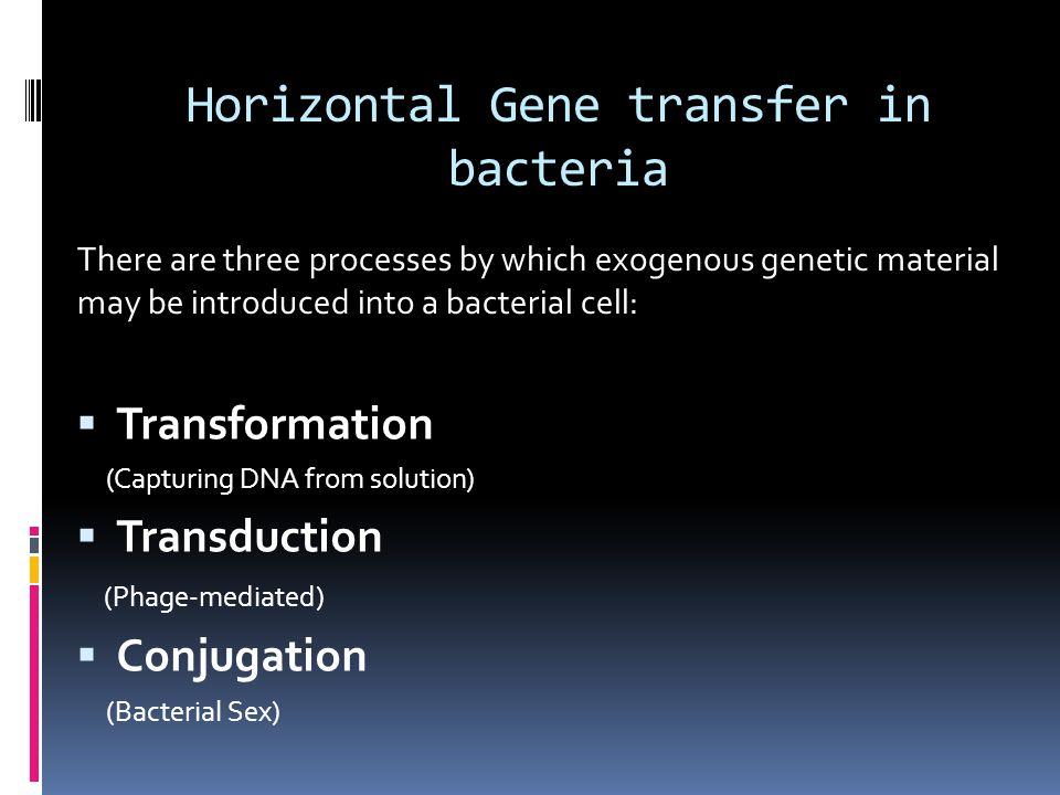 Horizontal Gene transfer in bacteria
