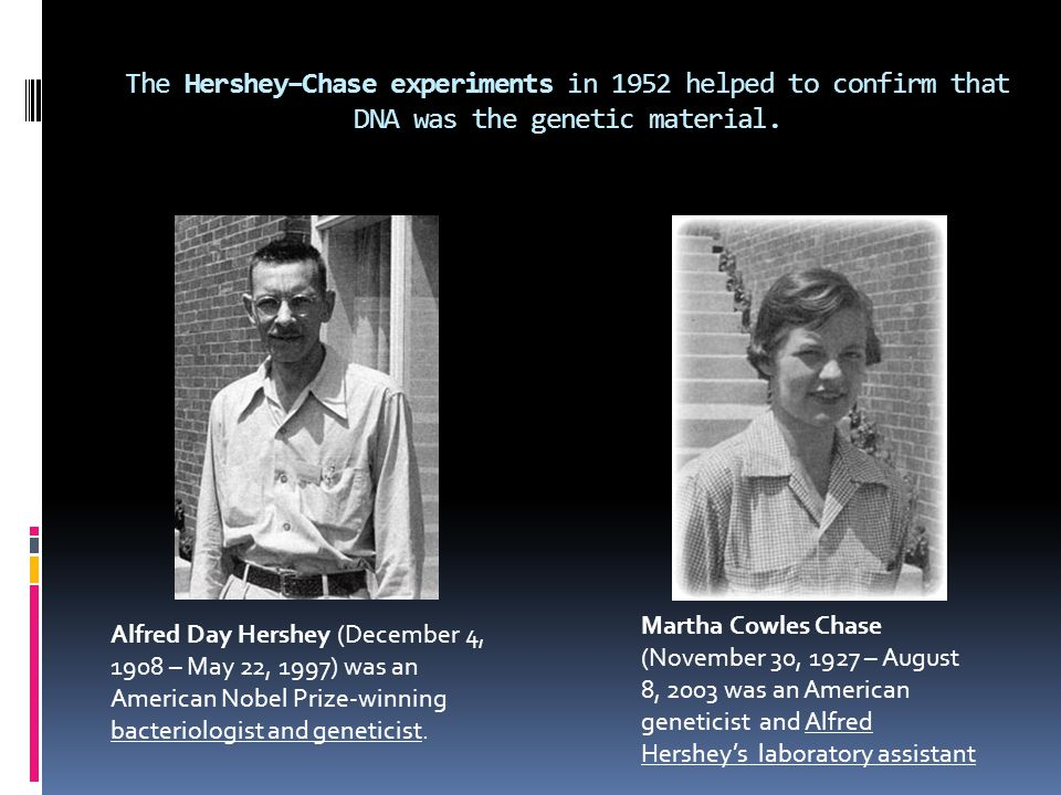 The Hershey–Chase experiments in 1952 helped to confirm that DNA was the genetic material.