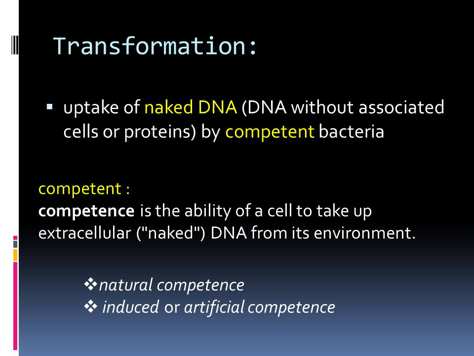 Transformation: uptake of naked DNA (DNA without associated cells or proteins) by competent bacteria.