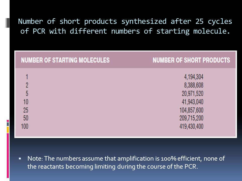 Number of short products synthesized after 25 cycles of PCR with different numbers of starting molecule.