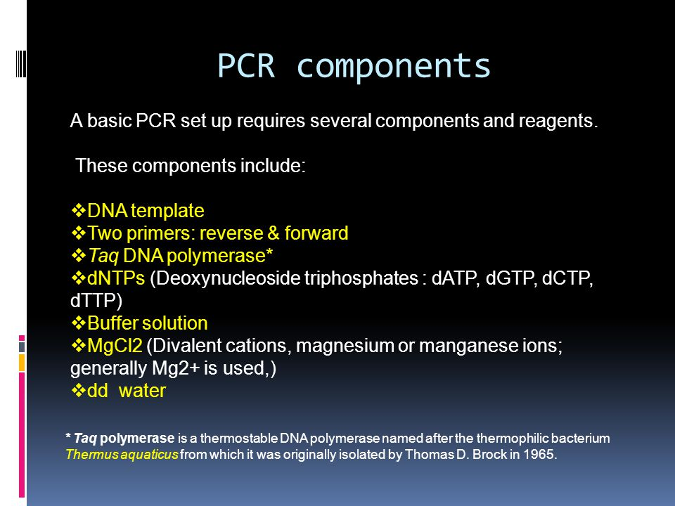 PCR components A basic PCR set up requires several components and reagents. These components include: