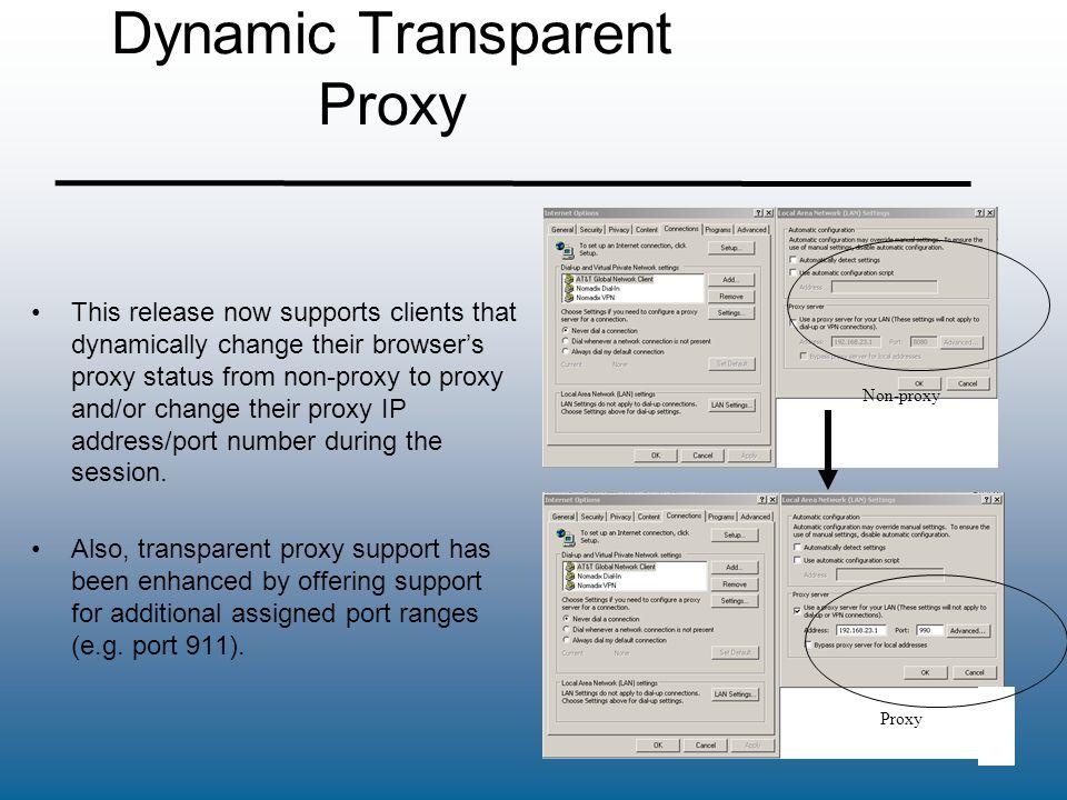 Dynamic Transparent Proxy