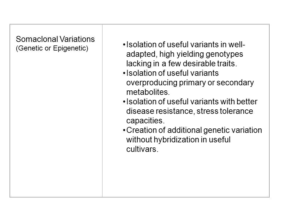 Somaclonal Variations