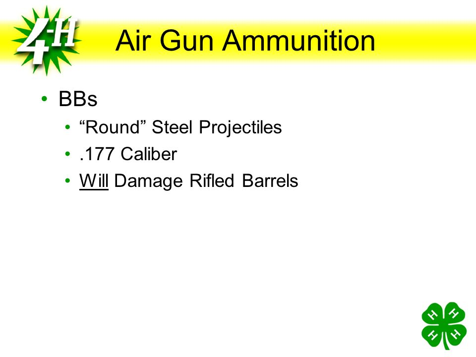 Air Gun Ammunition BBs Round Steel Projectiles .177 Caliber