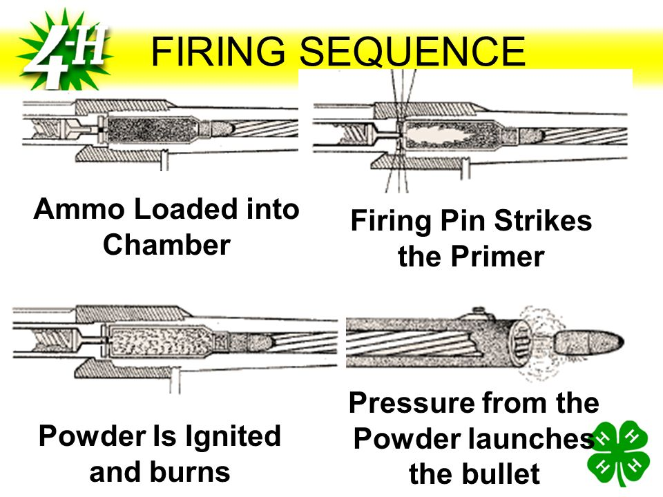 FIRING SEQUENCE Ammo Loaded into Chamber Firing Pin Strikes the Primer