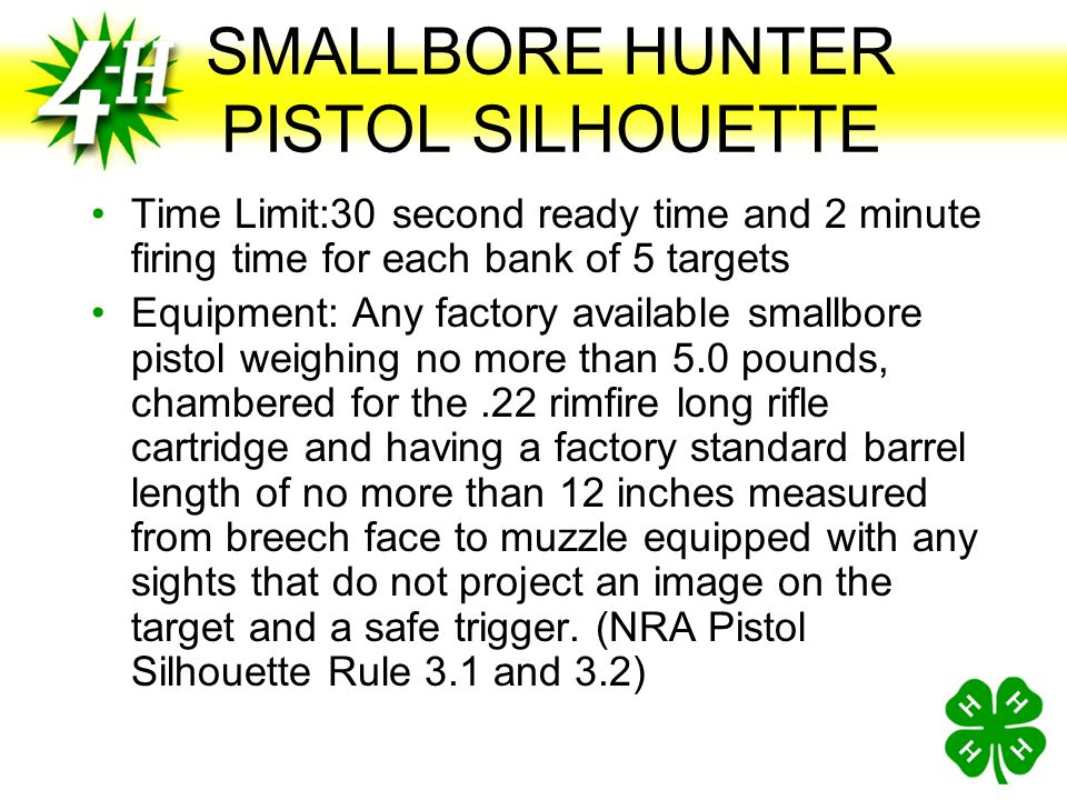 SMALLBORE HUNTER PISTOL SILHOUETTE