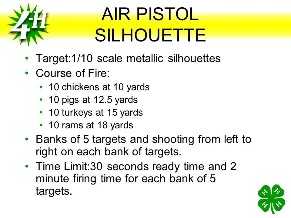 AIR PISTOL SILHOUETTE Target:1/10 scale metallic silhouettes