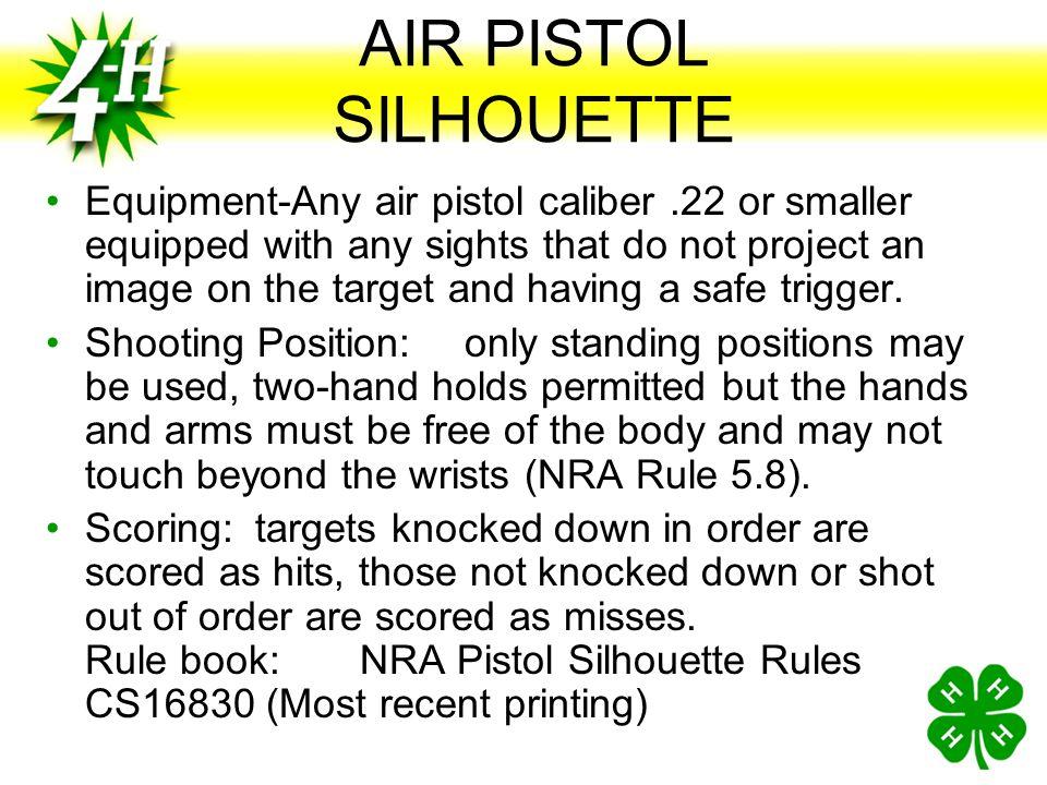 AIR PISTOL SILHOUETTE