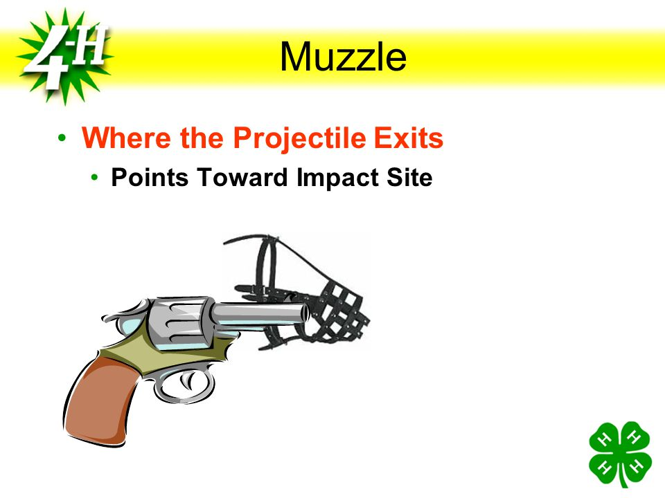 Muzzle Where the Projectile Exits Points Toward Impact Site