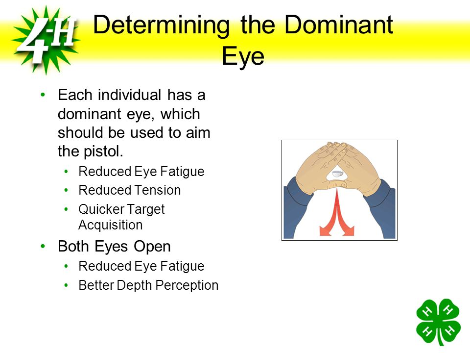 Determining the Dominant Eye