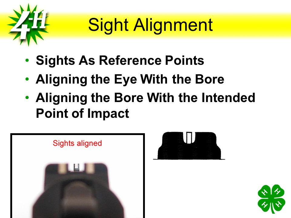 Sight Alignment Sights As Reference Points